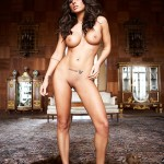Ashley Dupre desnuda en Playboy