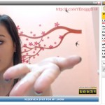 webcams-gratis-11